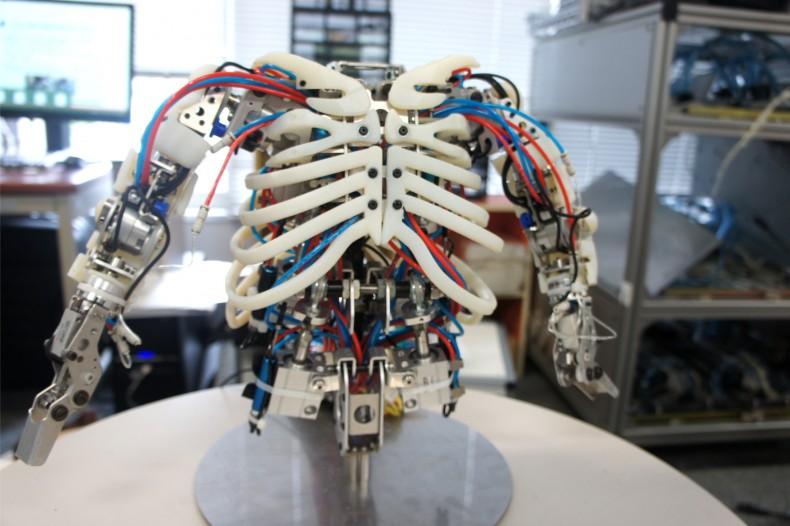 小型アンドロイドの骨格機構開発